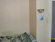 Березники: Продам квартиру 1 комн, кв-ра Юбилейная 23 (брежн), 3/5эт Продам квартиру  1 комн. кв-ра Юбилейная 23 (брежн), 3/5эт, 13/25м. Рядом остановка, садик,