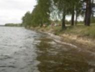 Екатеринбург: Продам Дачный участок Продам сад возле озера Окункуль в Каслинском районе.