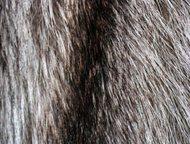 Красноярск: Шуба из енота Шуба /Пальто меховое/ женская из енота.   Длинная, ниже колена на треть.   Объёмная. Пушистая. Тёплая.   Несколько расклешена, начиная о
