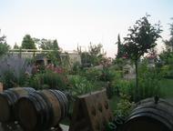 Ялта: Продам дом в г, Ялта пгт, Никита ул, Оранжерейная, Продам дом в г. Ялта пгт. Никита ул. Оранжерейная. 3/3 эт 600/500/- Великолепный дом с красивым сад