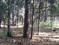 Москва: Недвижимость в Нахабино. Участок в лесном массиве с проектом под строительство загородной резиденции или оздоровительного Недвижимость в Нахабино. Уча